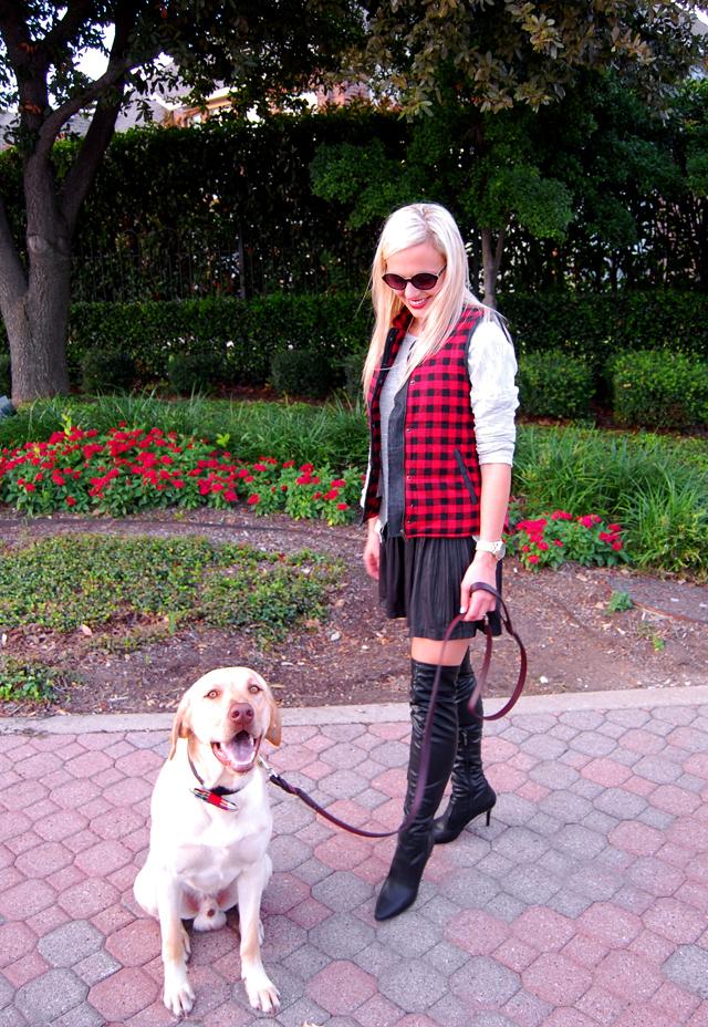 5-pitbull-awareness-puppy-milk-and-honey-boutique-plaid-vest-blog-vandi-fair-lauren-vandiver